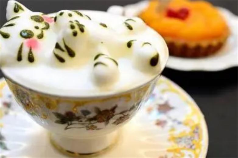 咕嚕貓咖啡館加盟